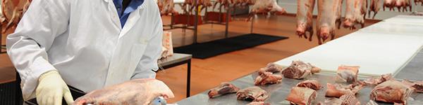 Lihatööstused