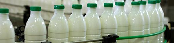 Piimatööstused